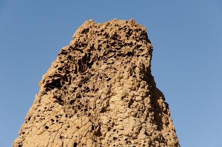 Termite Mound Texture - Australia