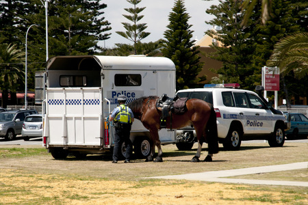 mounted: Mounted Police in Australia city.