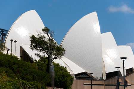 utzon: SYDNEY, AUSTRALIA - December 12, 2016: The Sydney Opera House is a multi-venue arts center designed by Danish architect Jorn Utzon