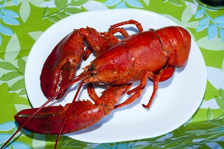 Prince Edward Island Lobster - Canada