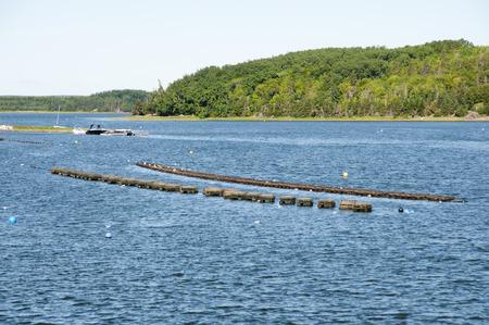Lobster Trap Farm Stock Photo