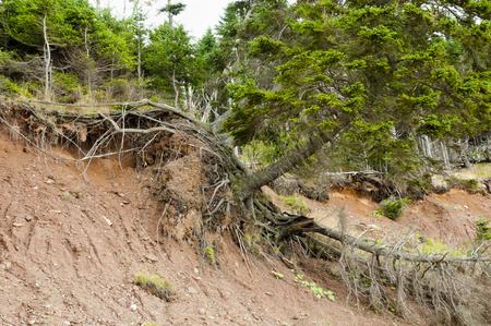 Terrain Landslide Foto de archivo