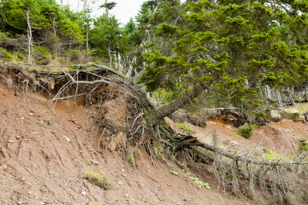 Terrain Landslide Stock Photo