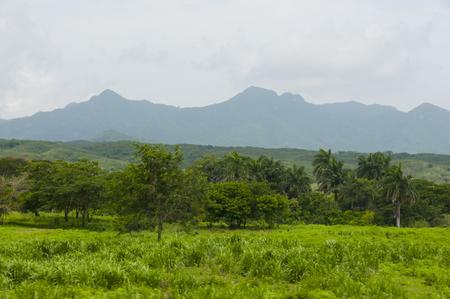 Topes de Collantes Natural Park - Cuba Stock Photo - 84815280
