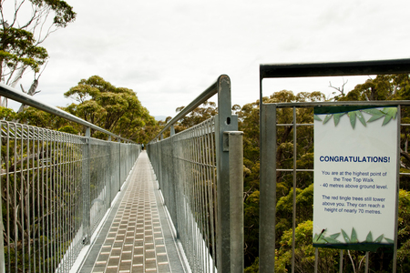 Tree Top Walk - Walpole - Australia