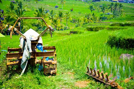 Rice Paddy Tiller - Indonesia