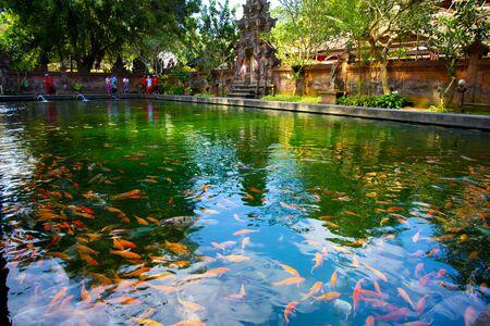 Tirta Empul Temple - Bali - Indonesia 写真素材 - 133162550