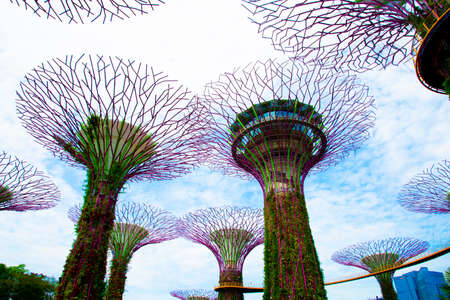 Singapore City, Singapore - April 12, 2019: Supertree Grove Trees at the Gardens by the Bay