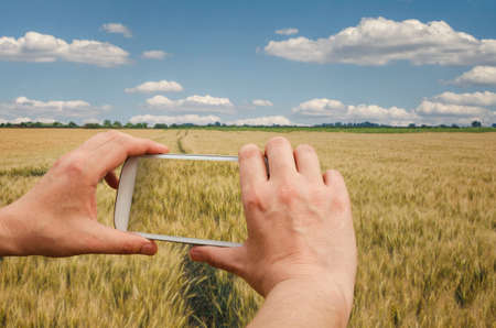 Agronomist is taking a photo of the wheat field and examining crops. Agricultural business concept.