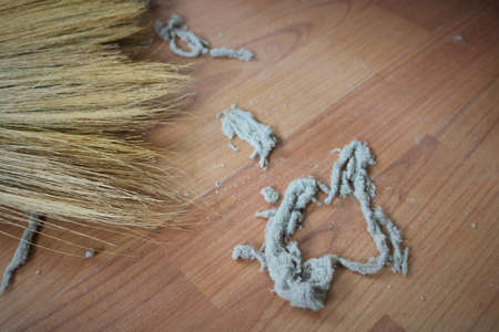slovenly: Close-up of dust on the wooden floor. Stock Photo