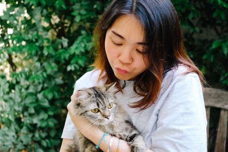 Young Asian woman playing with her persian cat, human-animal relationships.