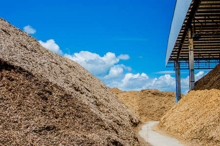 Pile of wood chips at biomass co-generation plant at the foreground in focus with beautiful blue sky in the background out of focus