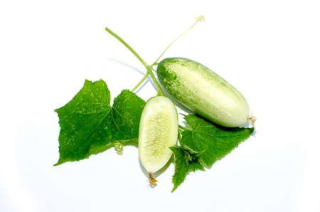 bullish: cetrioli rialzista isolato su sfondo bianco