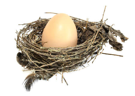 Brown eggs in a nest isolated on a white  photo