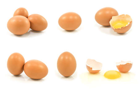 Brown chicken eggs isolated on white background with clipping path