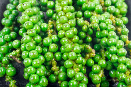 green color black pepper photo