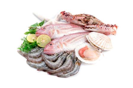 Frischer Fang von Fisch und anderen Meeresfrüchten Standard-Bild - 39482714