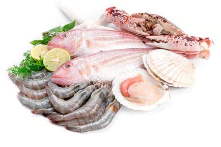 Verse vangst van vis en andere zeevruchten Stockfoto