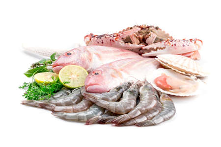 sparus: Fresh catch of fish and other seafood