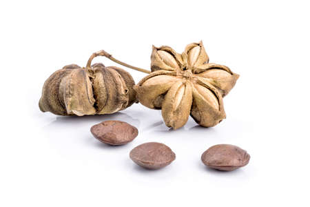 sacha inchi peanut seed on white background Stock Photo