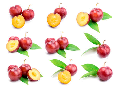 Red plum fruit on white background Imagens