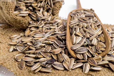 semilla: Semillas de girasol aislados sobre fondo blanco