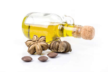 Image of sacha inchi peanut seed with Oil bottles on white background