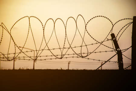 wire mesh: Barbed wire on dark fence. Monochrome silhouette photo