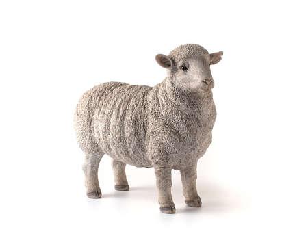 White sheep figure on white background Stock Photo