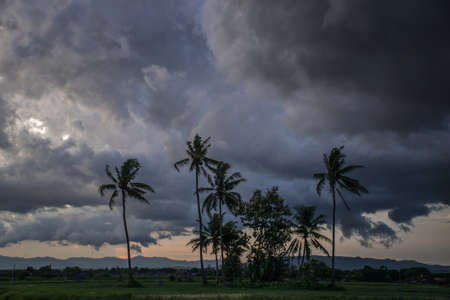 Storm cloud and sun over green field, Thailand.