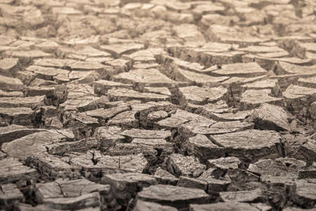 Climate change and drought land, Part of a Huge Area of Dried Land Suffering from Drought - in Cracks Reklamní fotografie
