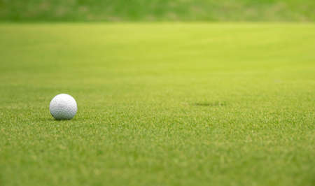 Golf ball on the green