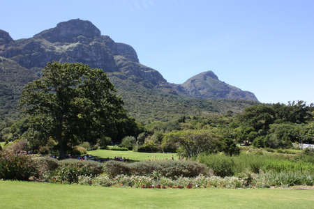 Kirstenbosch Botanical Gardens, Cape Town, December 2012  Table Mountain photo