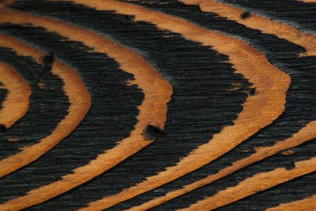 close range: Natural wood texture, wooden table, close-up, close range