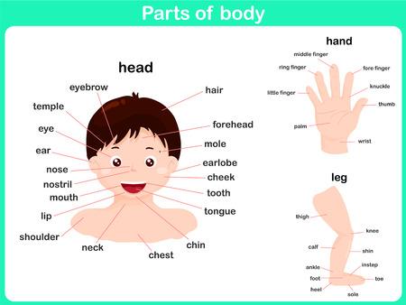 lenguaje corporal: Partes del cuerpo