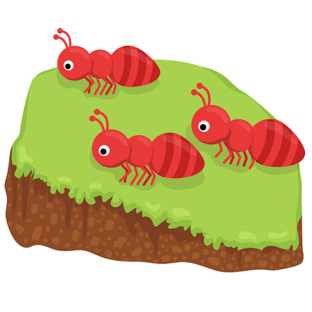 cartoon ant: Cute cartoon three ant