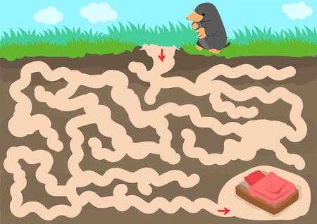 Vector maze game with find mole room in underground