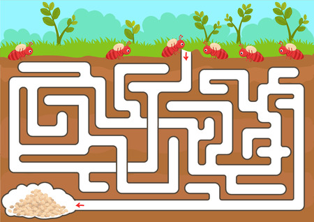 Vector maze game with find ant room in underground