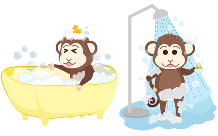 lave: Monkey shower and bathe at bathroom.