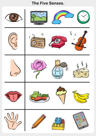Five senses, hand, lips, eye, ear, nose.