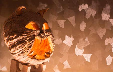hollows: Halloween pumpkin with a light into the shadows