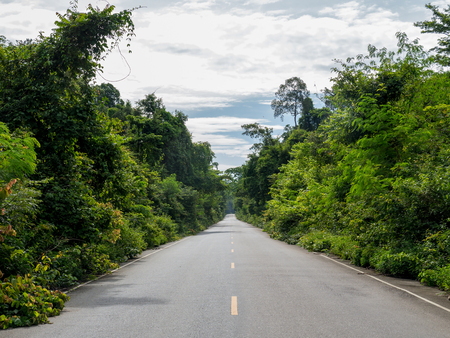 2 way: Summer Country Road With Trees Beside Concept , Thailand