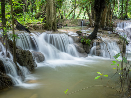 tropical evergreen forest: Waterfall in the forest ,Thailand