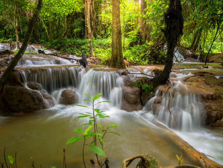 gill: Waterfall in the forest ,Thailand