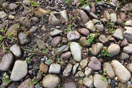 unorganized: Bits and pieces nature pebble stones rough ground