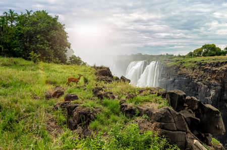 Victoria Falls view Stock Photo - 131448414
