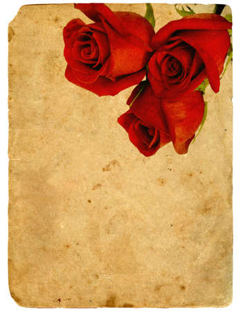 red Roses. Old postcard. Isolated on white background photo