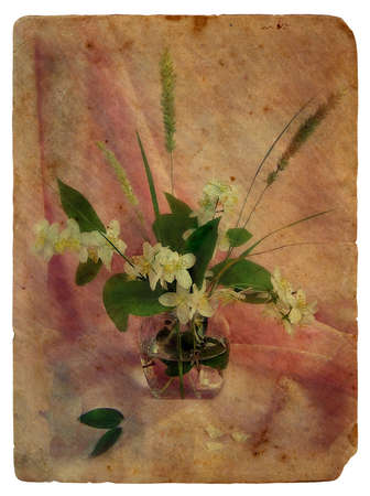 Still Life with Jasmine. Old postcard, design in grunge and retro style photo