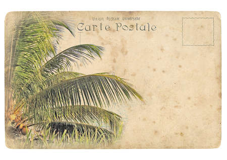 coconut palm. Old postcard, design in grunge and retro style photo