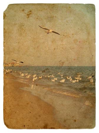 Seascape with seagulls. Old postcard, design in grunge and retro style photo